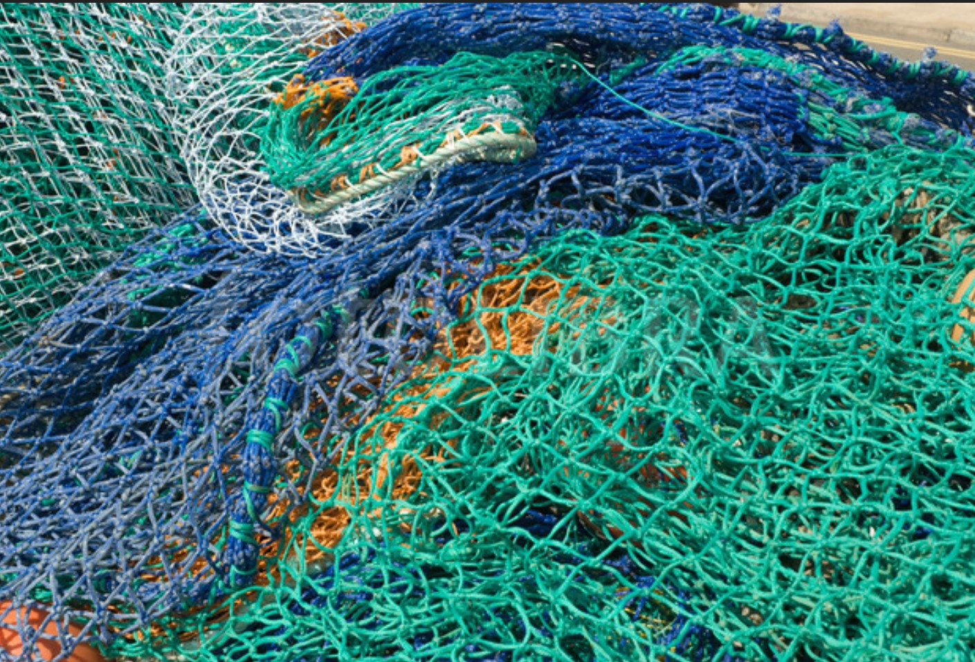 BOSS - 1D: Fishing Nets